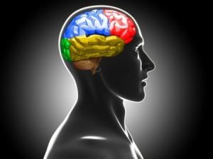 Mental Health Serivices
